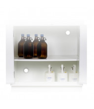 "Just-Rite 24115 Polyethylene Shelf with Shelf Pegs fits 36"" W Solid Polyethylene Corrosives Acids Cabinet (example of use)"
