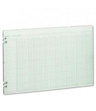 "Wilson Jones 17"" x 11"" 24-Column Loose Accounting Paper, 100-Sheets"