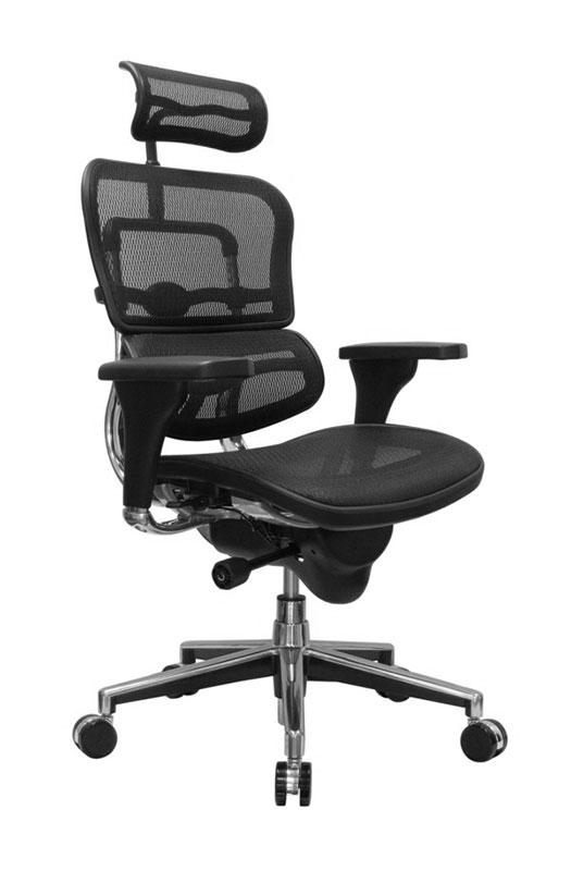 Eurotech ErgoHuman ME7ERG High-Back Mesh Deluxe Executive Chair With Headrest